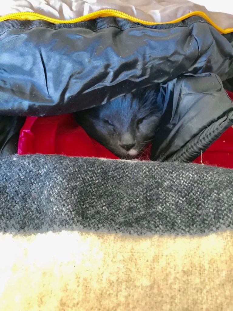 Bundled up Idgie