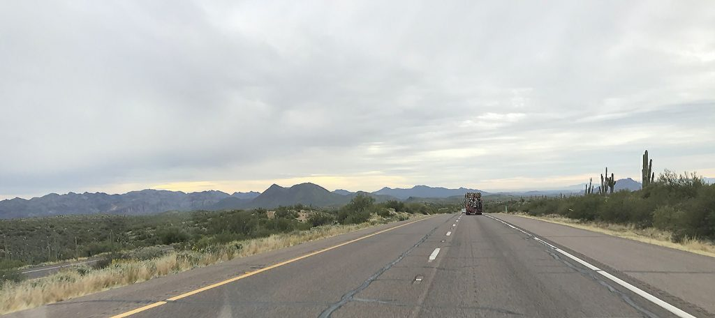 Taking stock: I passed through the Tonto National Forest on the way to Phoenix from Cottonwood, AZ.